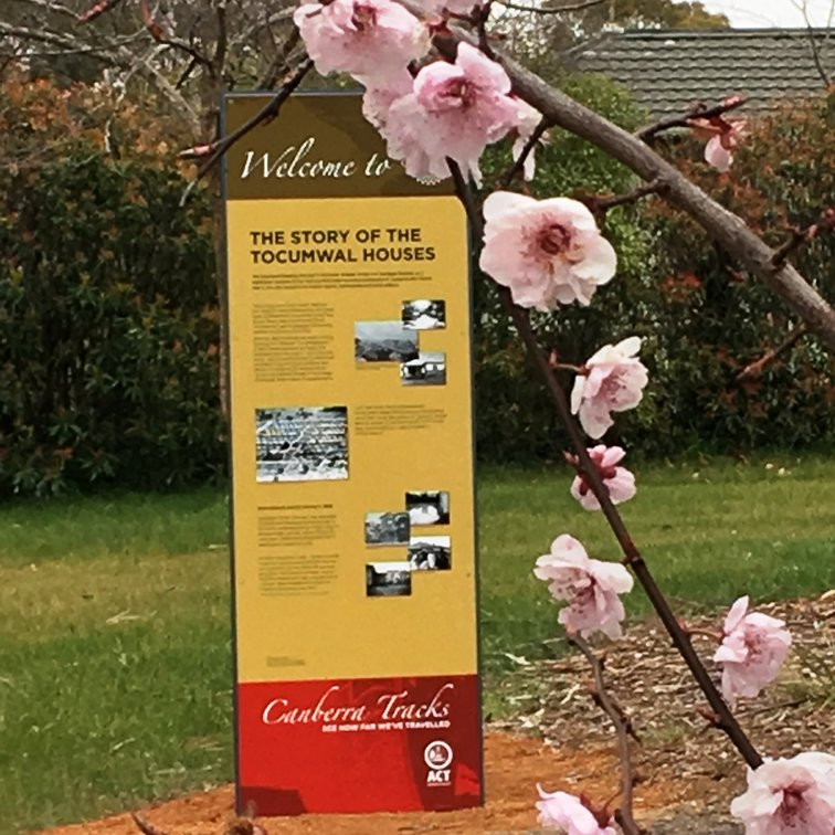 Story of the Tocumwal Houses interpretive sign