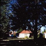 Home in Reid